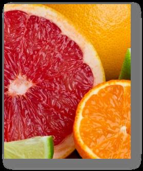 Citrus Fruit Fundraisers